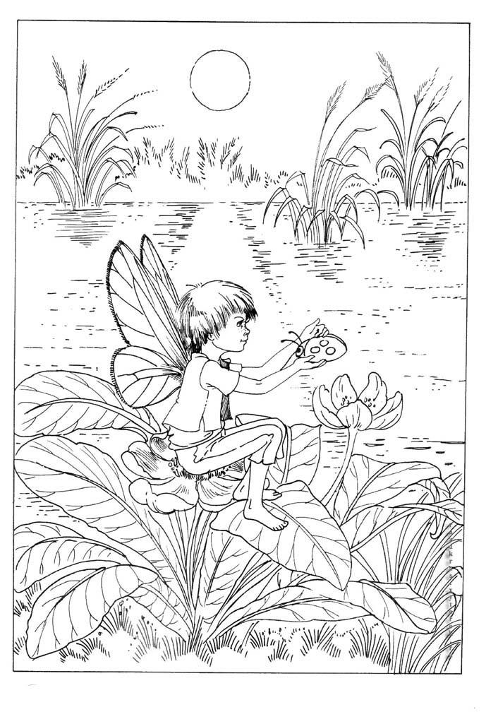 Раскраска Эльфы - детские раскраски распчеатать бесплтано