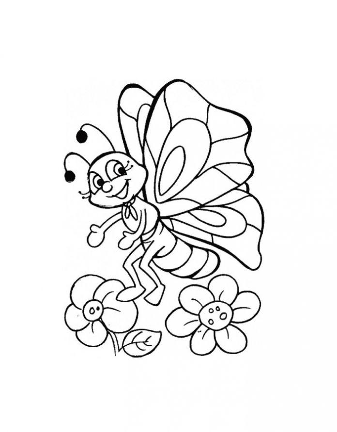 Цветок и мотылек раскраска временем