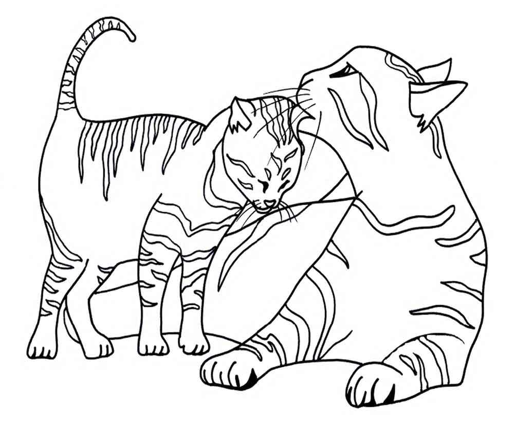 картинки раскраски кошки и картинки галерея