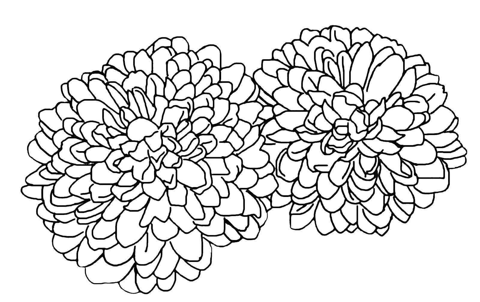 модульные спальни контурные картинки хризантемы подарок своему