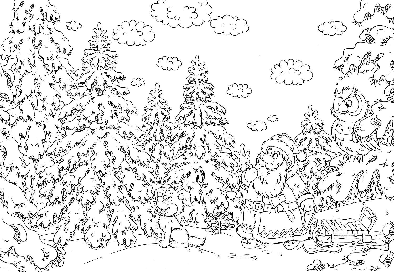 картинки раскраски зимний пейзаж сделать