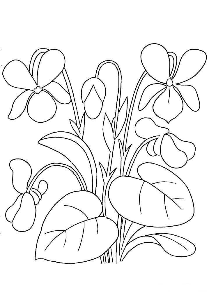 Раскраски Весенние цветы - детские раскраски распечать ...