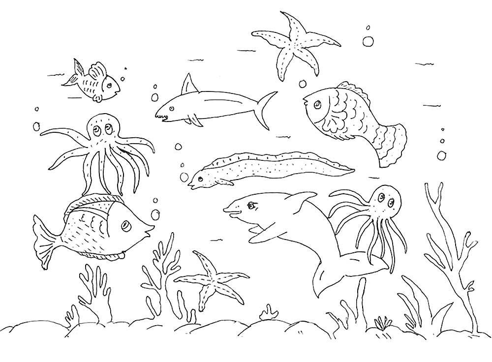 Раскраски Морские Обитатели - детские раскраски ...