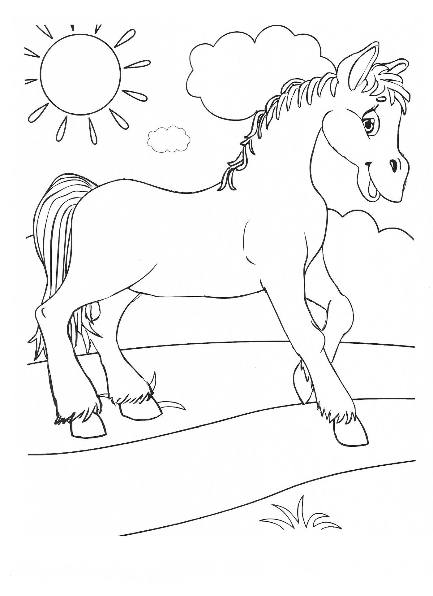 Раскраска Домашние животные - детские раскраски ...
