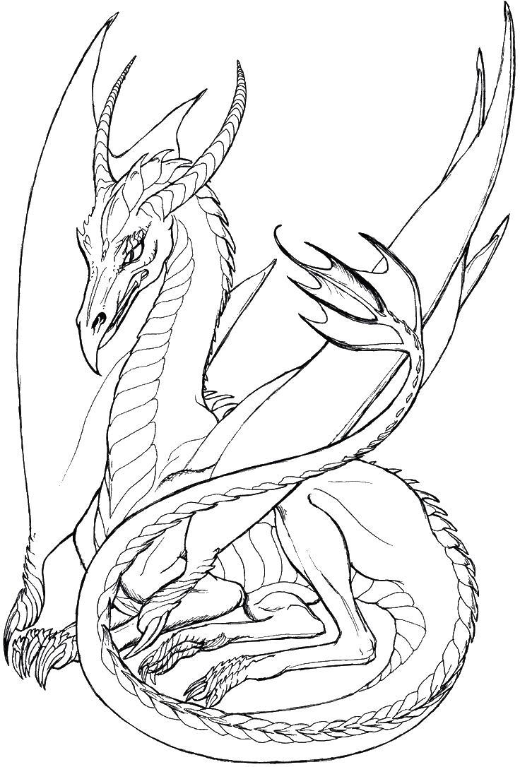 Раскраска Дракон - детские раскраски распечатать бесплатно