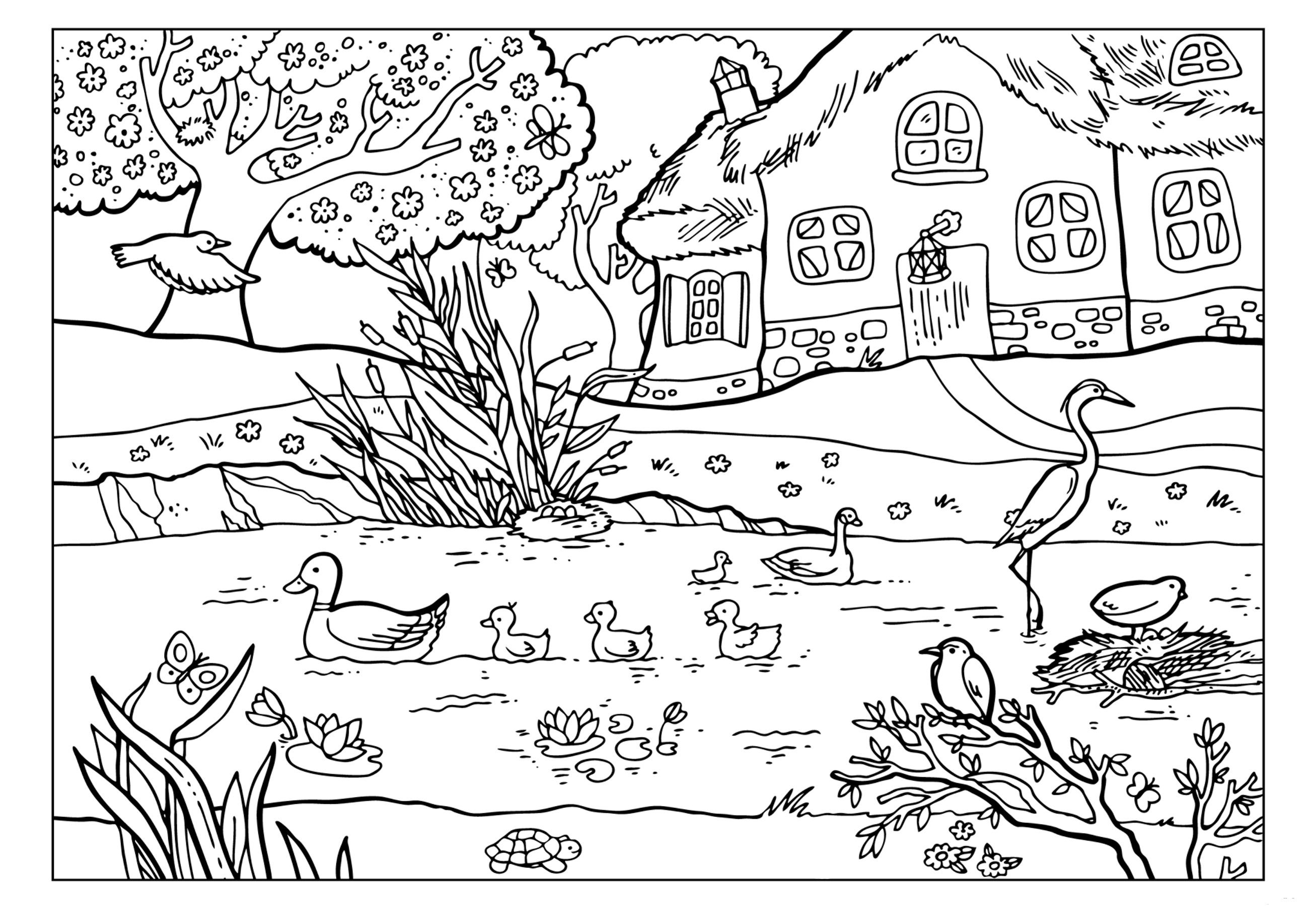 натали специализируется картинки для раскрашивания лето в деревне ферма