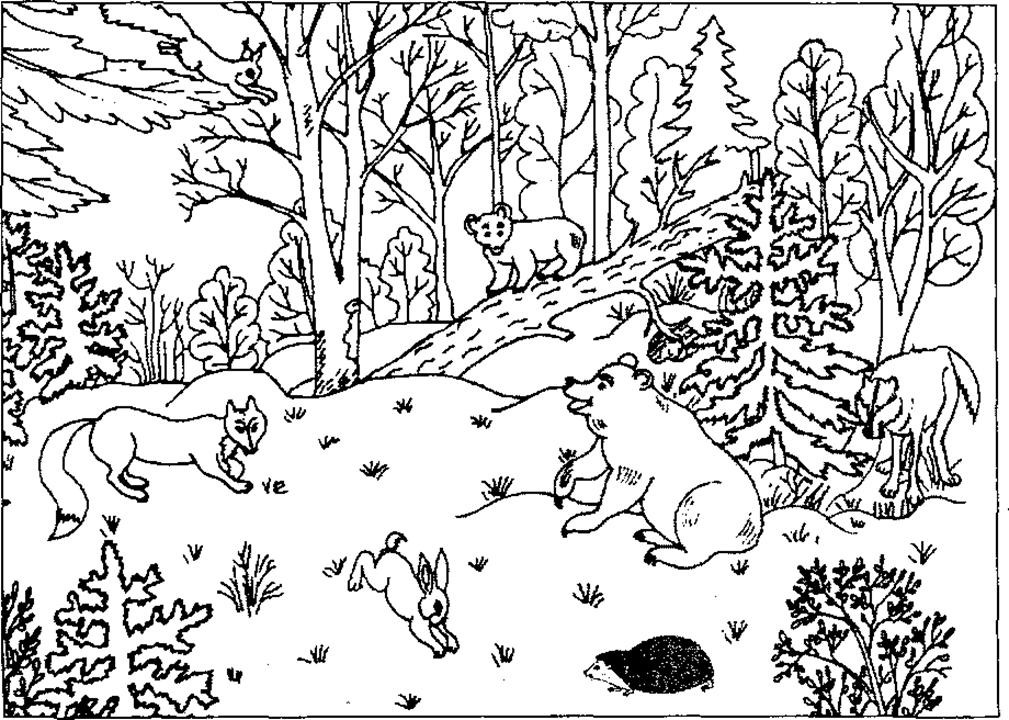 Раскраска животных на природе