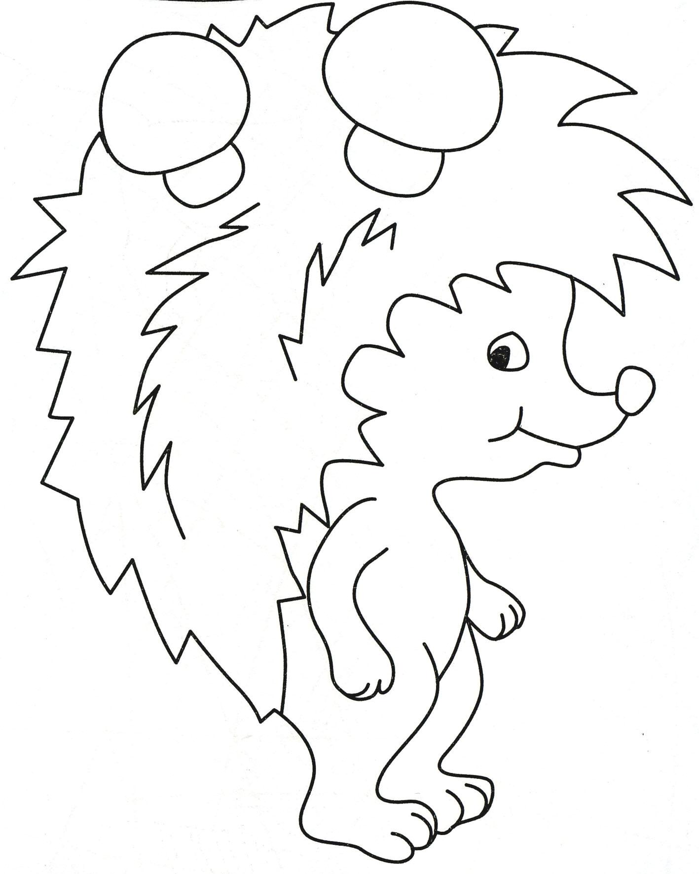 Раскраска Ежик - детские раскраски распечатать бесплатно