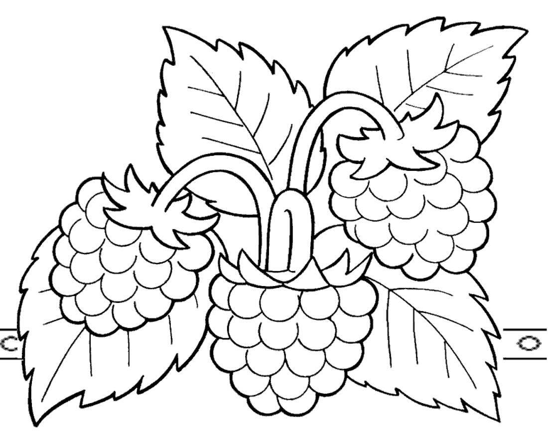 Раскраска ягоды малины