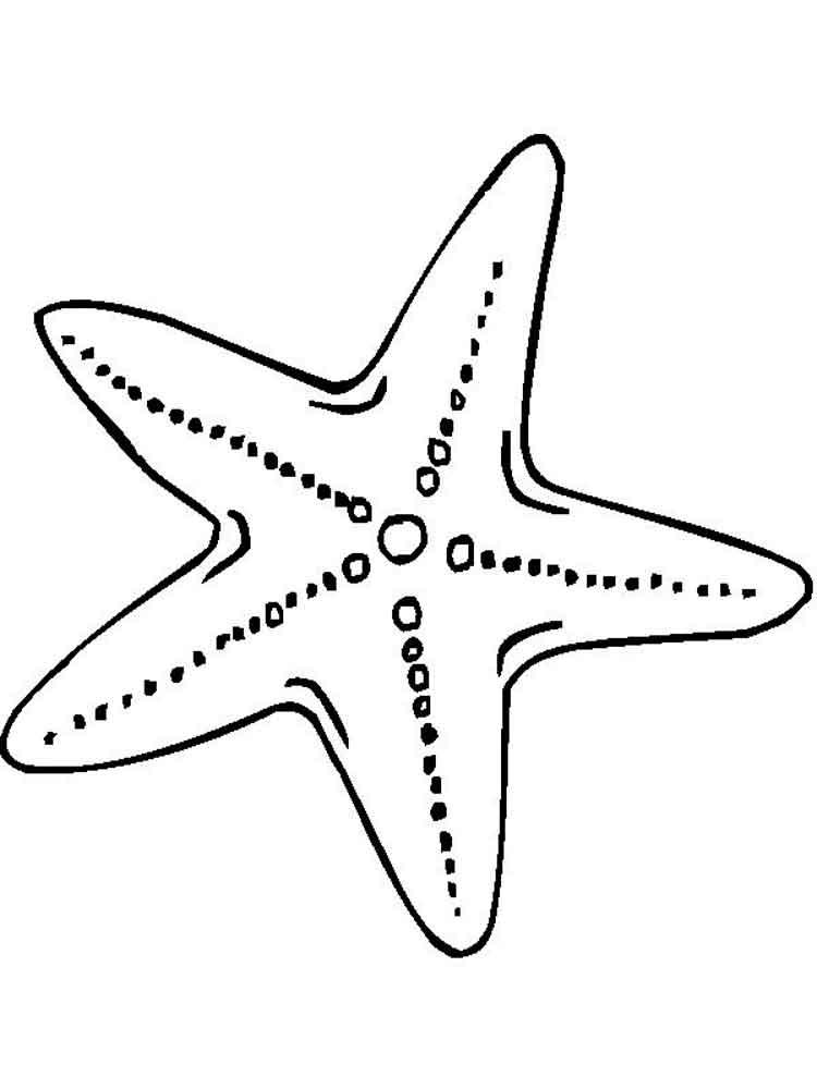 раскраски звездочки морские