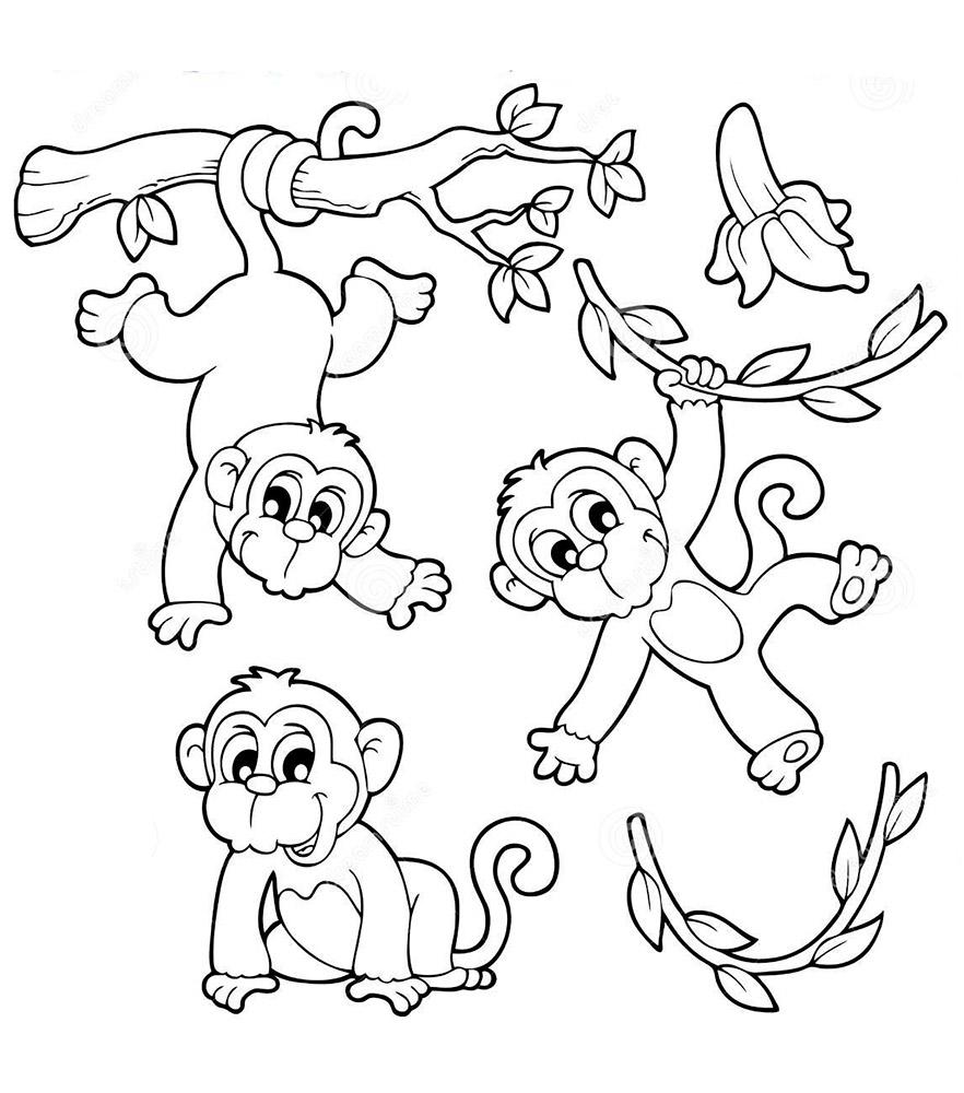 Раскраска Обезьяна - детские раскраски распечатать бесплатно