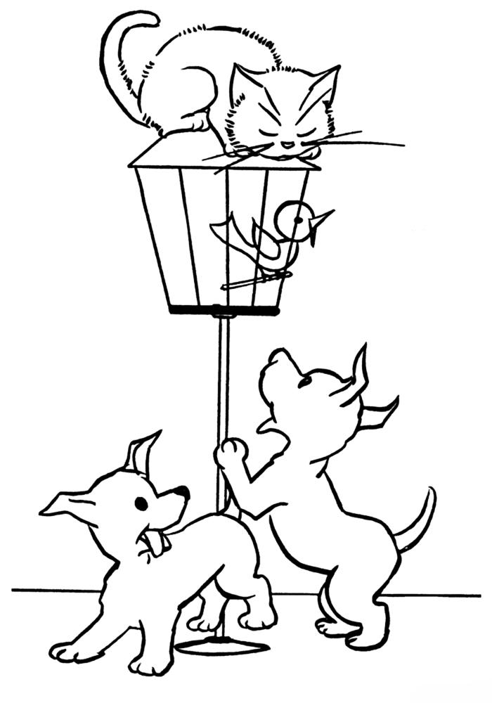 Раскраска Кошка и собака - детские раскраски распчеатать ...
