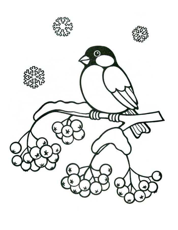 детей раскраска птички распечатать для