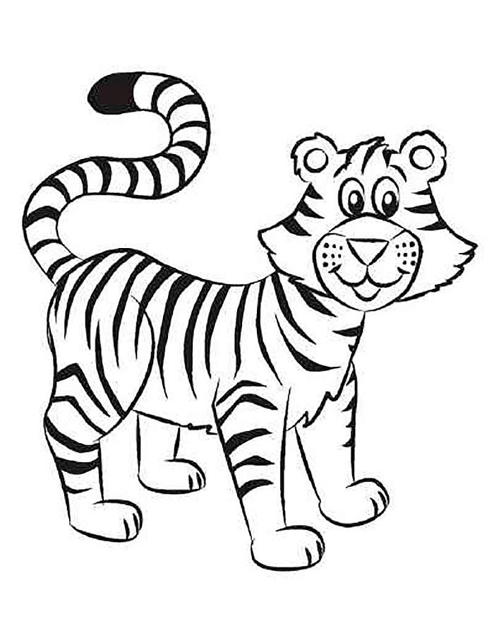 уссурийский тигр раскраска распечатать