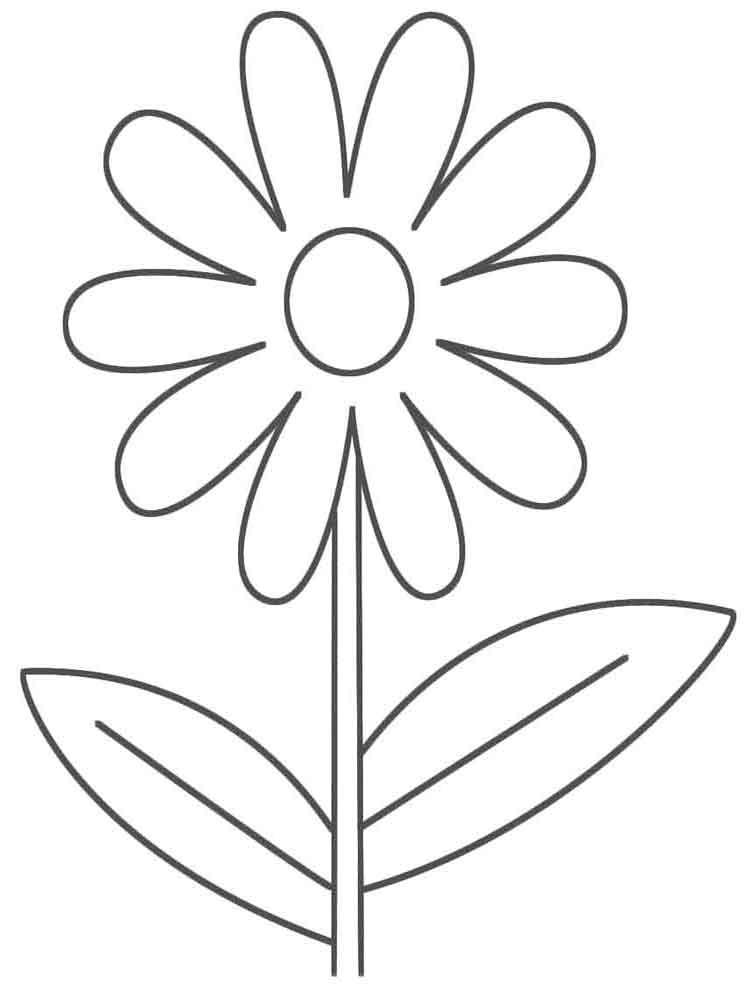 Раскраска Цветы крупные - детские раскраски распечатать ...