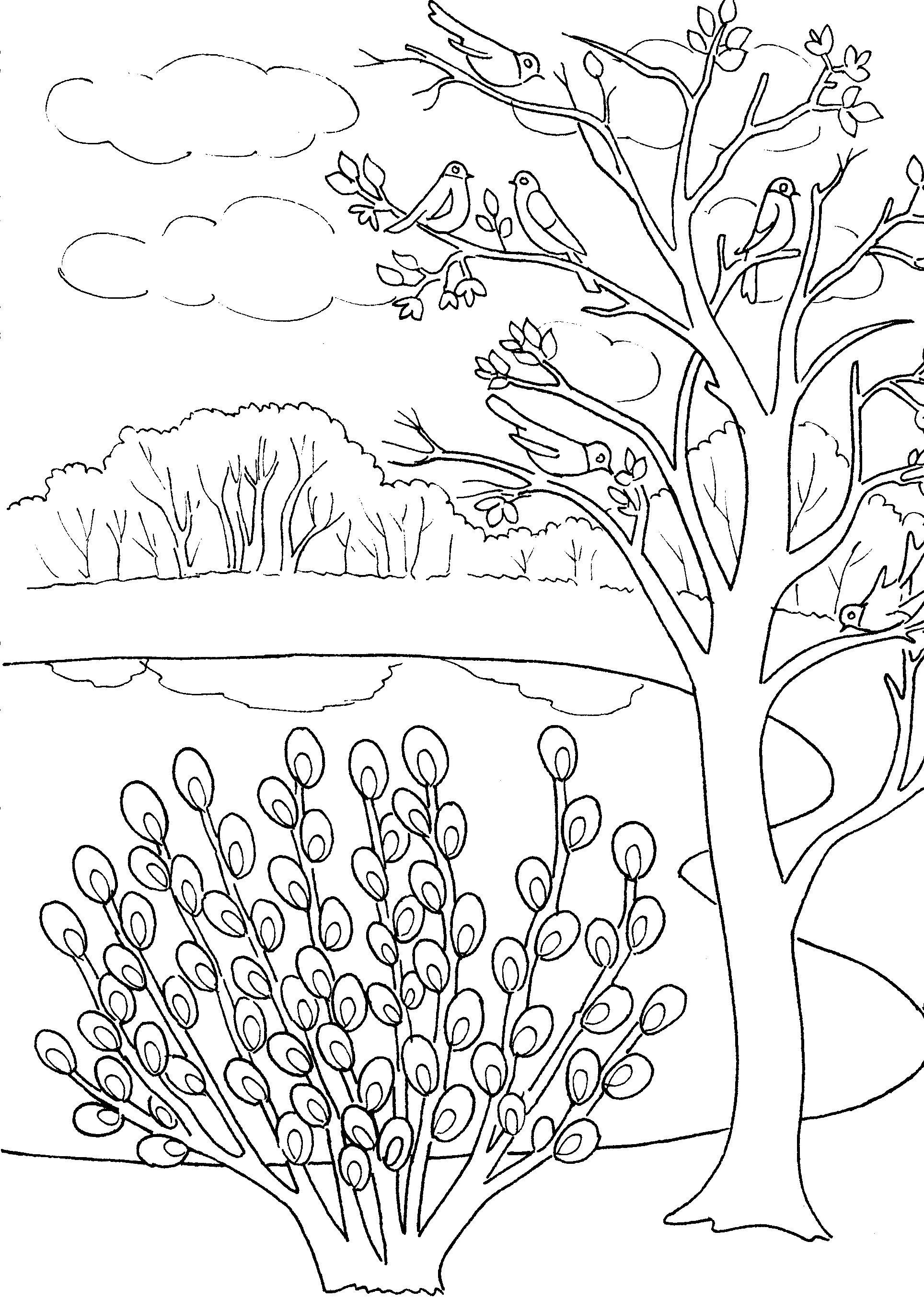 Картинки карандашом о весне