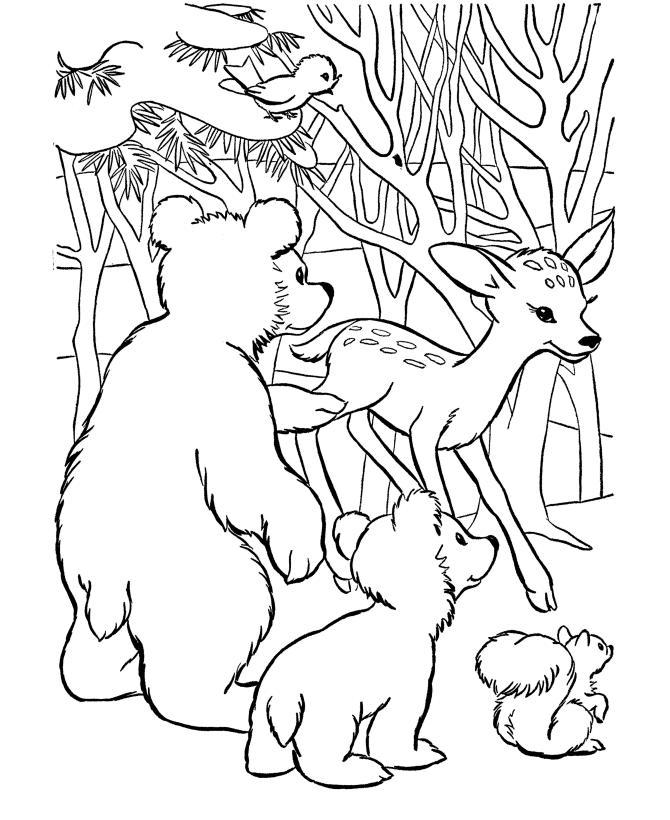 Анимационные картинки сказочного леса пакет