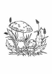 Мухоморы и трава