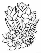 Раскраска Весенние цветы