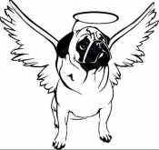 Раскраска Мопс ангел