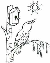 Птички весной