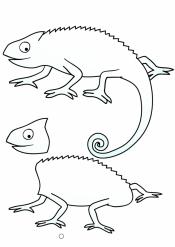 Хамелеон для детей