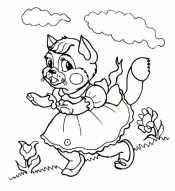 Красавица - кошка
