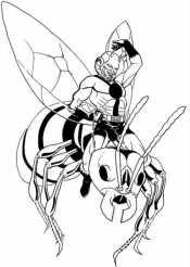 На муравье