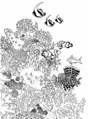 Раскраски Подводный мир