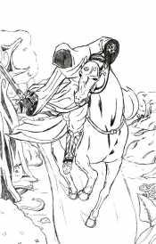Ассасин на коне