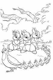 Зайцы и перепелки