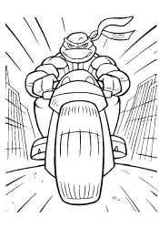 Черепашка на мотоцикле