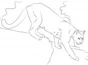 Картинка Пума