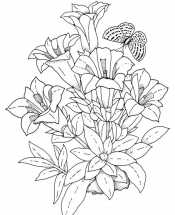 Букетик лилий