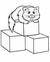 Кот на кубиках