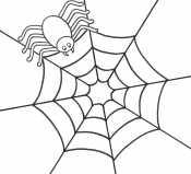Картинка Паутина и паук