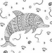 Раскраска Дельфин антистресс