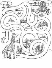 Жираф в лабиринте