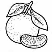 Мандарин с листиками