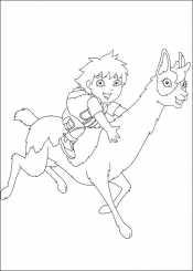 Диего на ламе