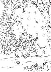 Зайцы в лесу