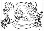 Октонавты помогают жемчужине