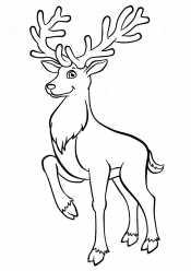 Храбрый олень