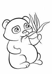 Картинки панда