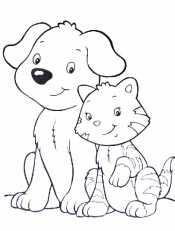 Котик и песек