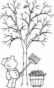 Убрали листья