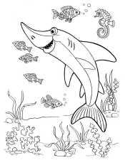 Раскраска Акулы