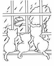 Дождь из окна