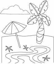 Пальма и зонтик