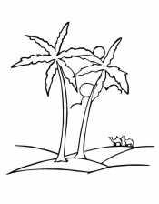 Пальмы и верблюды